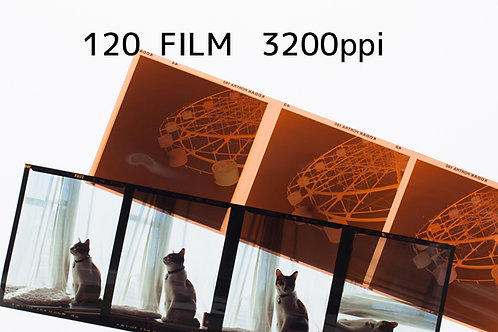 120 ブローニー FILM SCAN