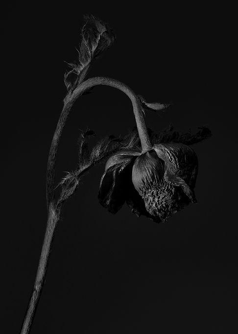 2I_Love_You_MAG_thegaabs-diptique-parfum