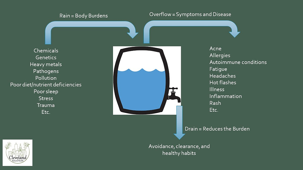 Reduce toxins, detoxification, Cleveland Natural Health, Dr. Nanci Miklowski