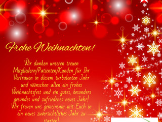FROHE WEIHNACHTEN und ein besseres neues Jahr!