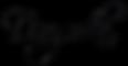 danyss_logo_základ_cz.png