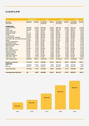 Financials (3).png