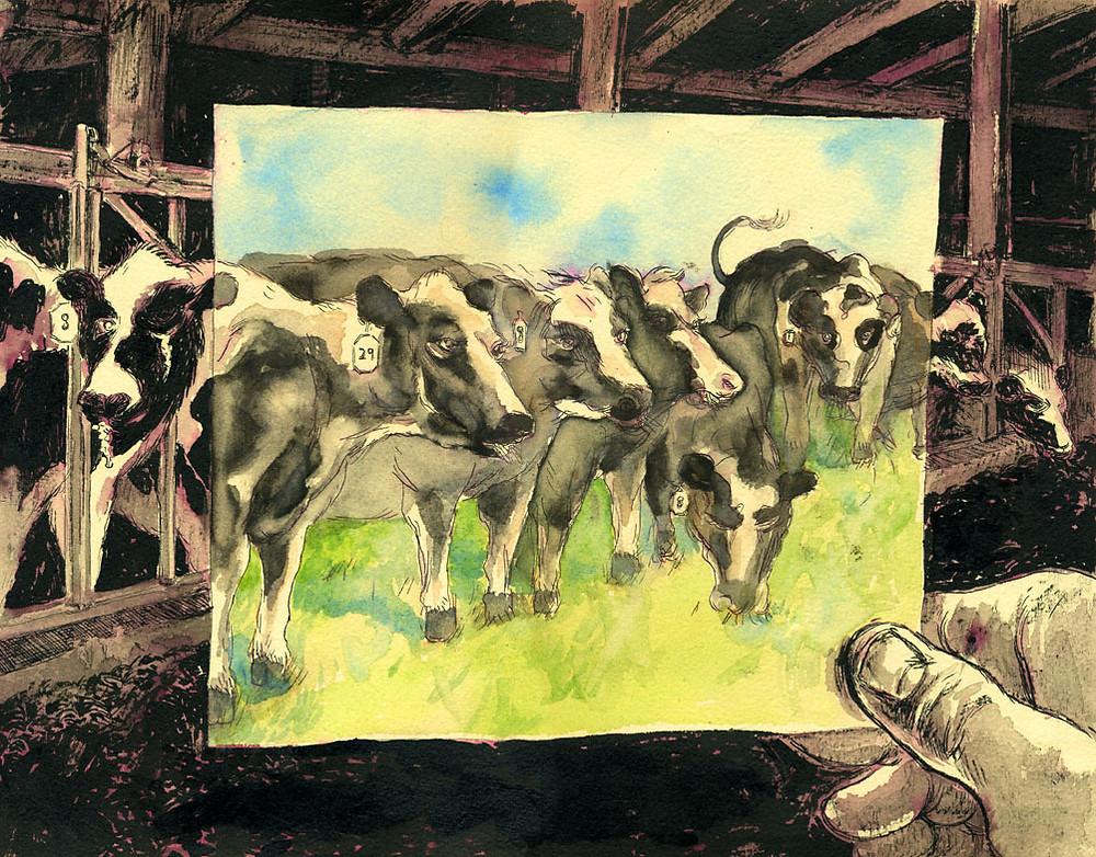 esxaton-Farm_Cows__Factory_Cows_by_mfreiheit.jpg
