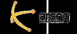 logo-arseg-300x133.png