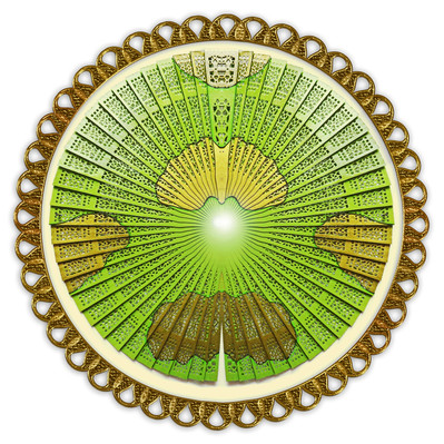 Bamboo gold circle orig.jpg