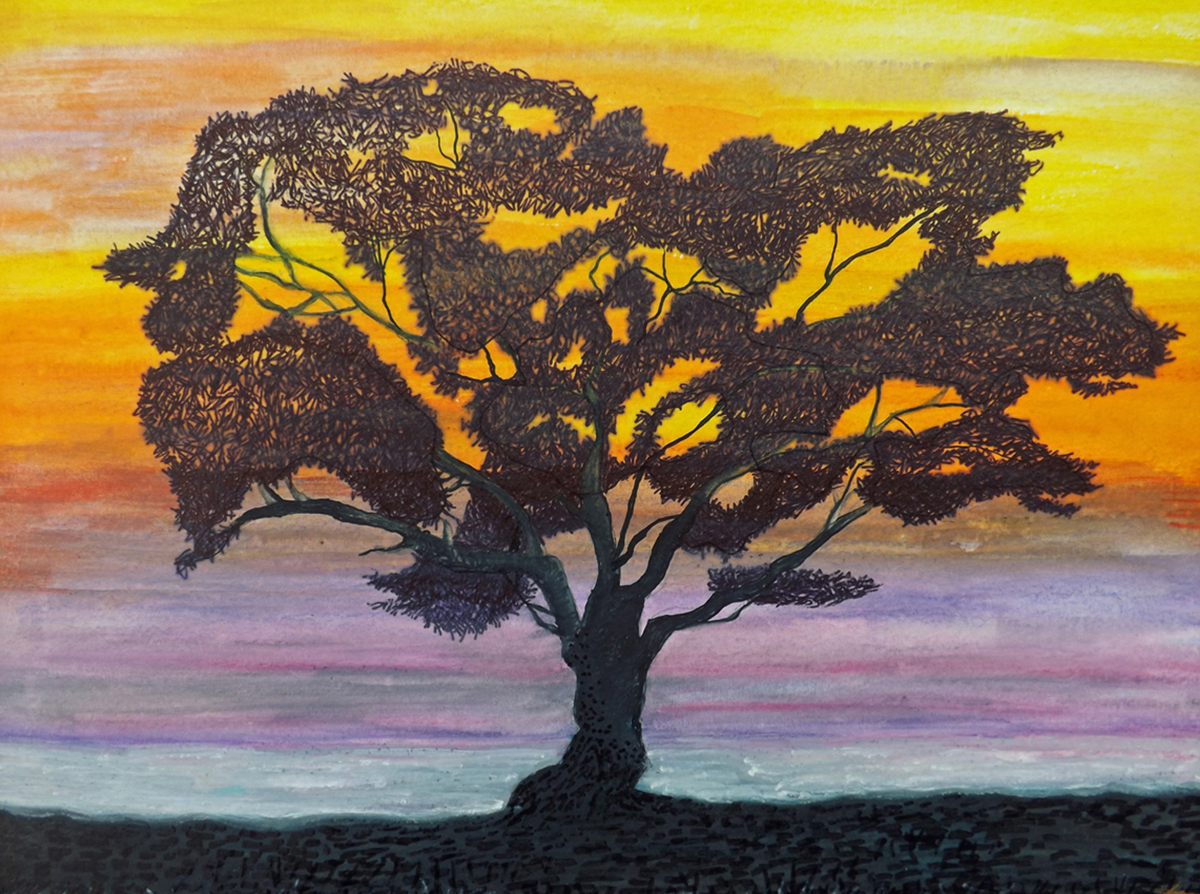 Sunset Tree 2016