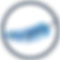 BFD Favicon (1).png