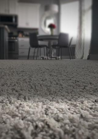"High Performance Carpet Cleaning Badge. - Joe & Jake Frost. """