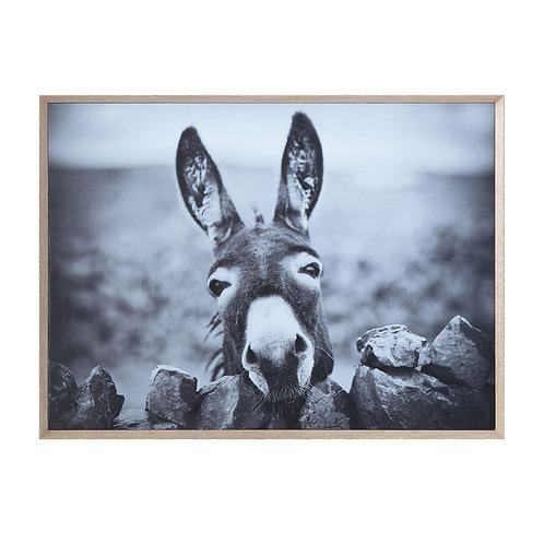 Wood Framed Donkey Wall Canvas Decor