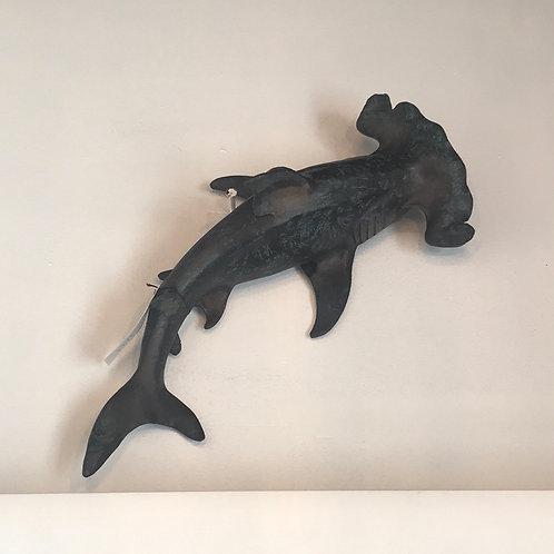 Acus Small Wall Shark