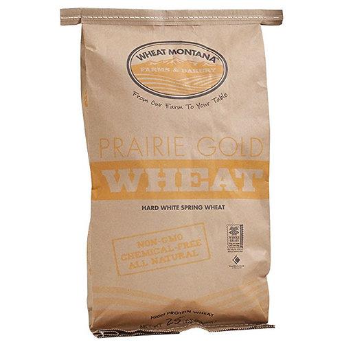Prairie Gold Wheat