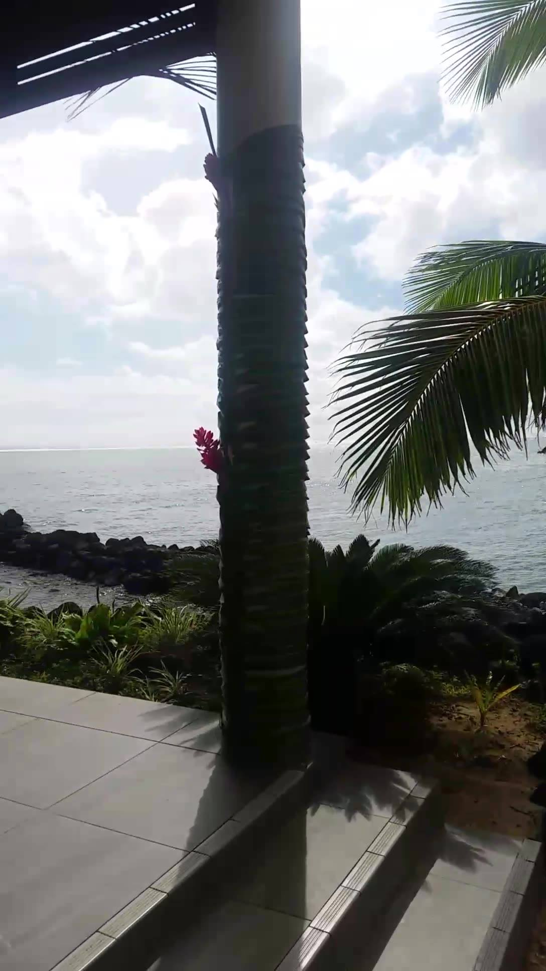 Beatific samoa at saletoga sands resort