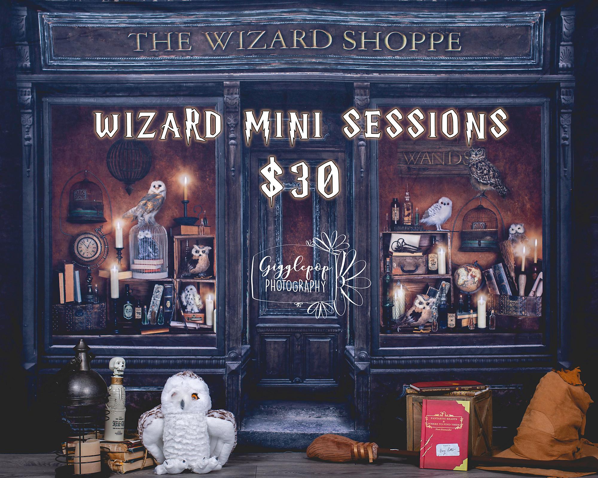 Wizard World Mini Session