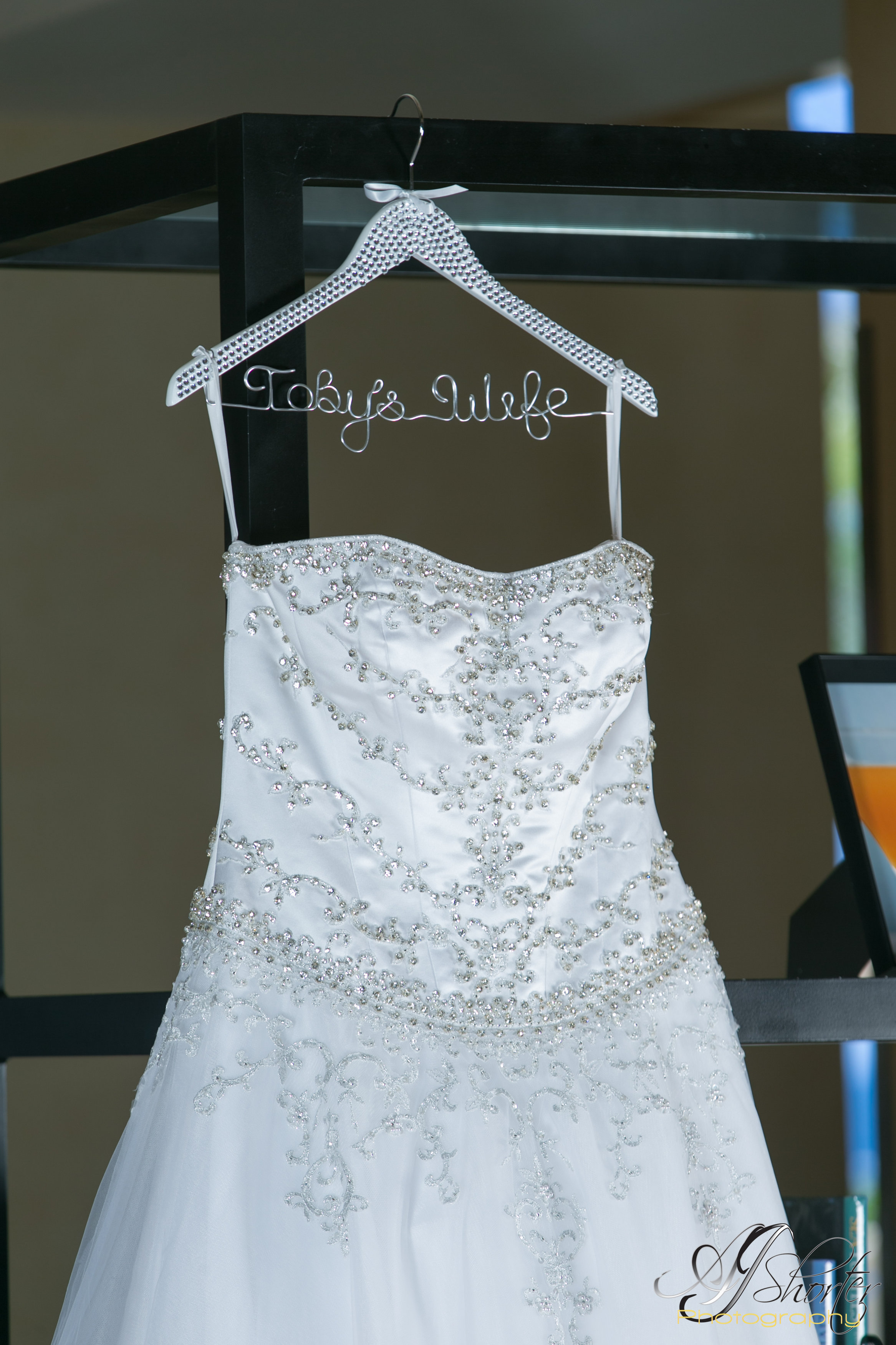 Wedding detailed shot- dress
