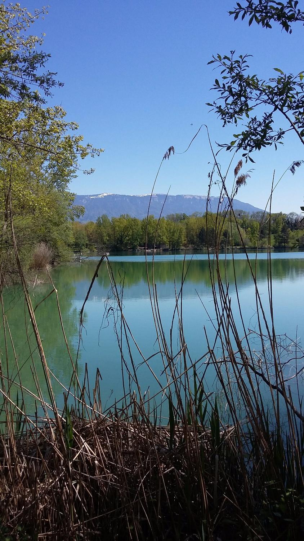 Pond near Annecy