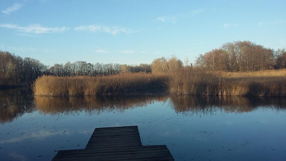 Crozagny pond in St Félix