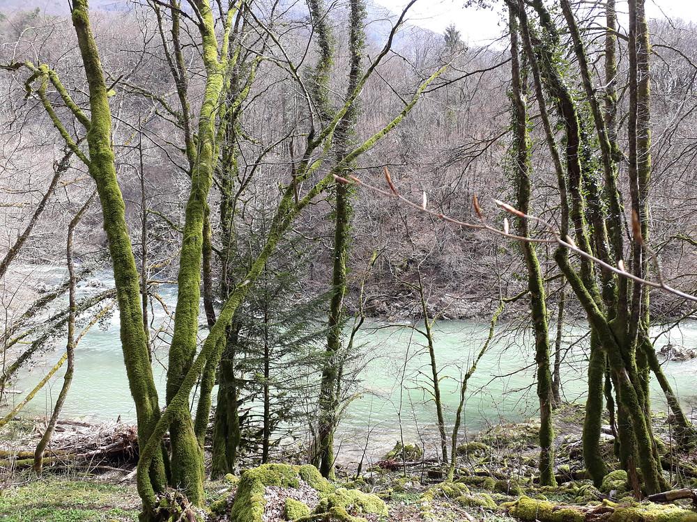 river bauges cheran cusy
