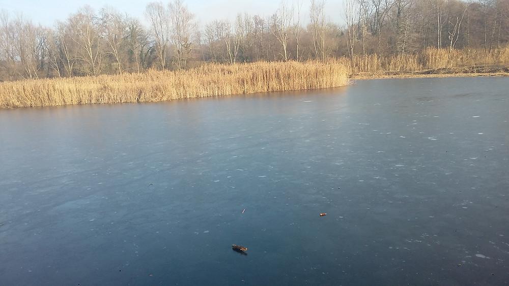 Crozagny pond