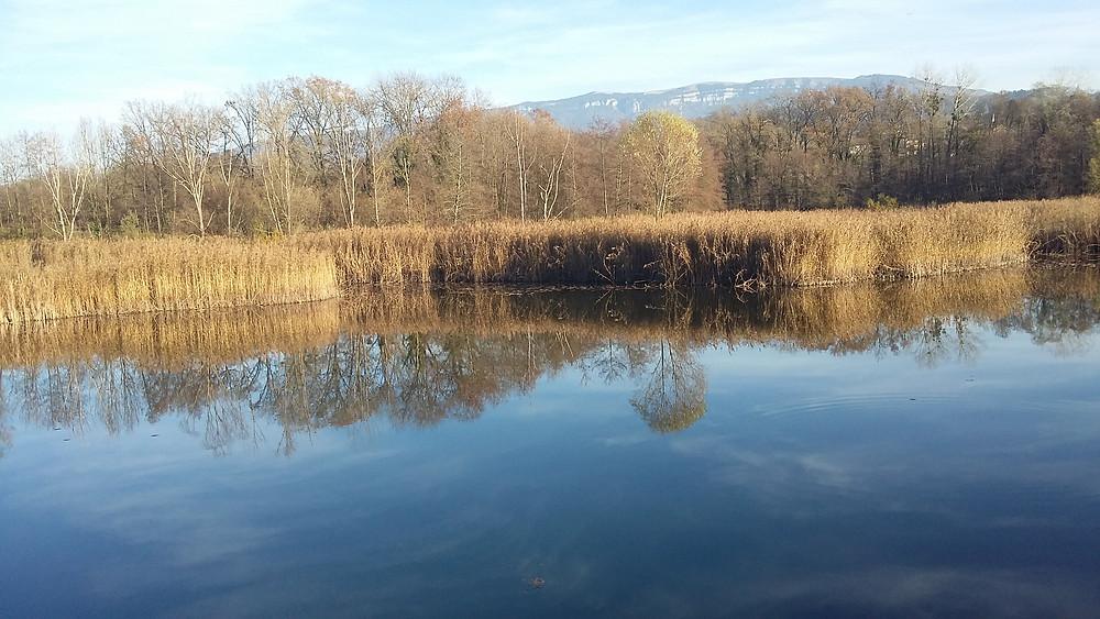 St Félix pond near Annecy