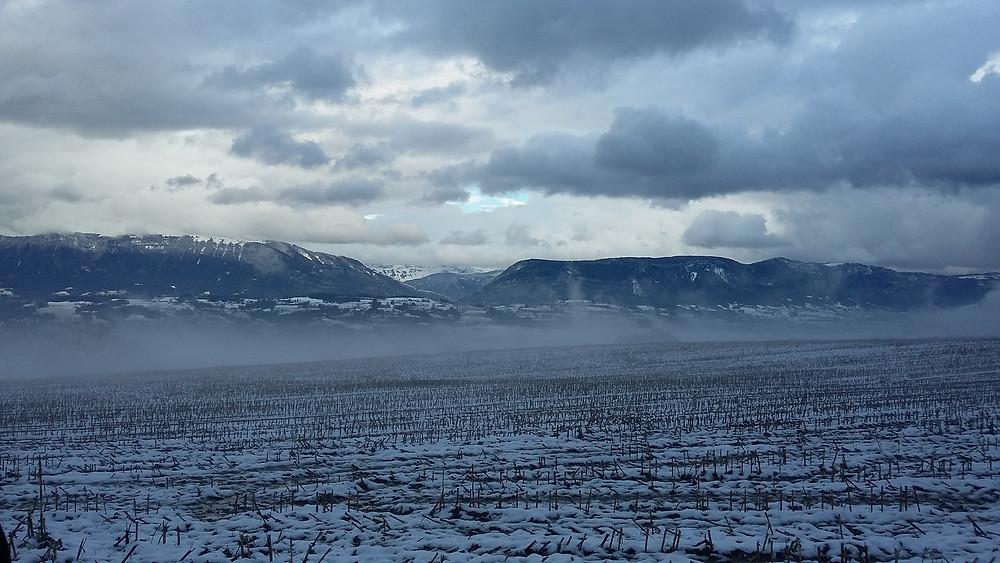 Photo of Massingy winter