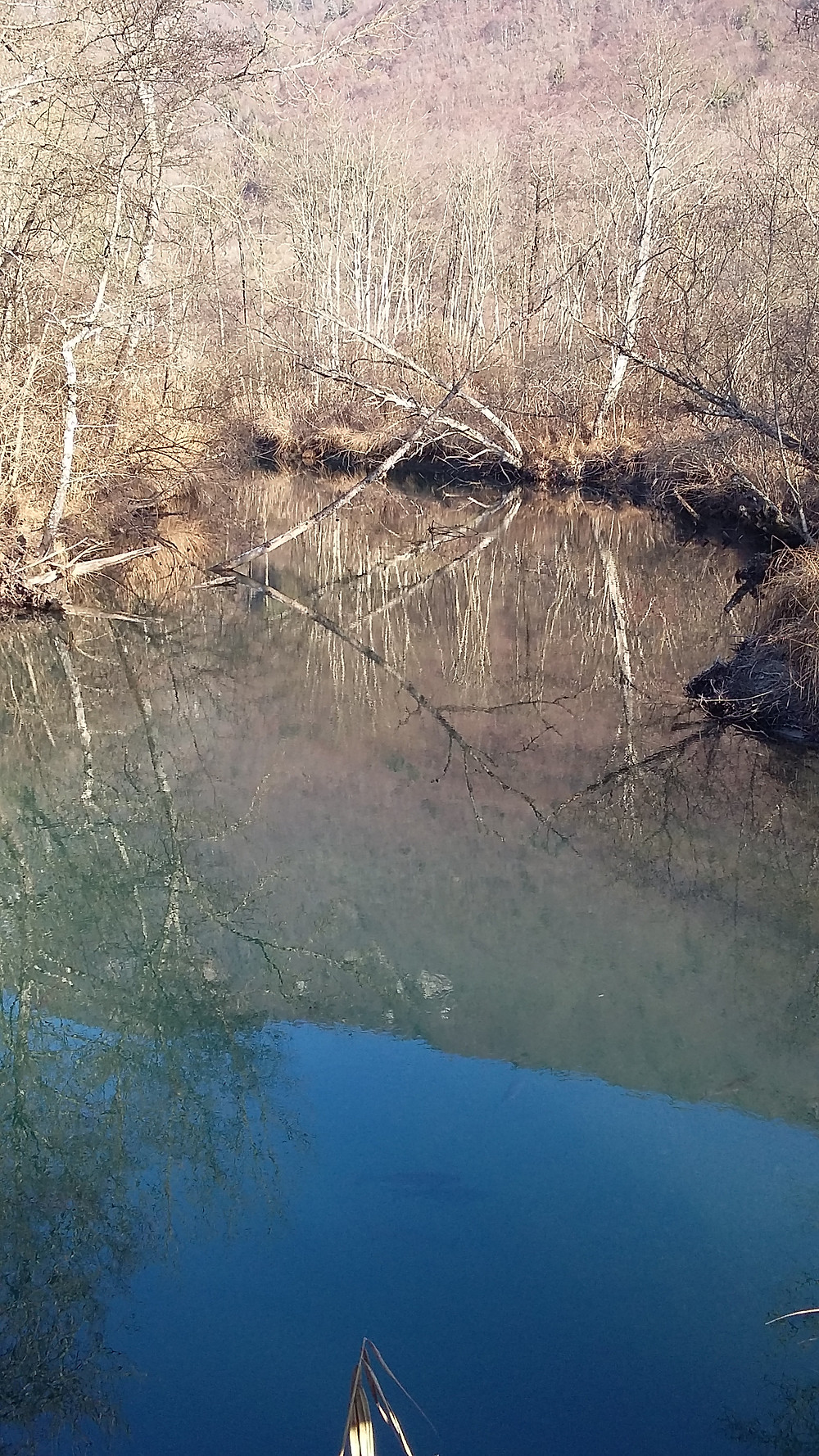 eau morte river