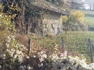 Autumn Photos of the Area