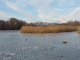 Frozen étangs de Crozagny