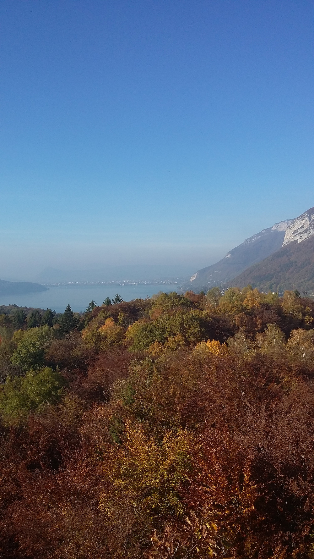 lake annecy during the fall