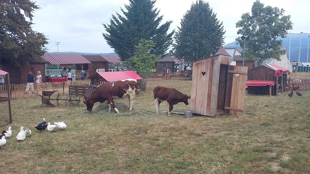 mini farm party seynod