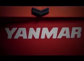 צבע אדום פרימיום חדש לינמאר.