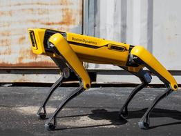ספוט - הרובוט שיכול לעשות הכל!
