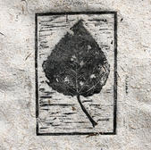Cottonwood Leaf no. 5.jpg