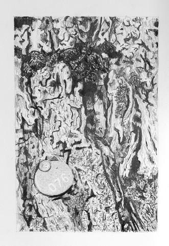 Tree Portrait #076