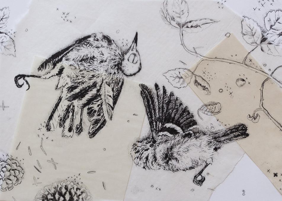 Fallen Birds (6/6)