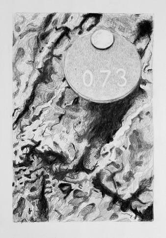 Tree Portait #073