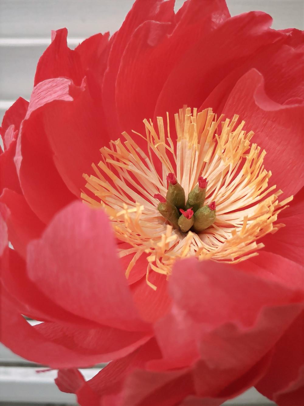 Focus sur un coeur de pivoine fait main en papier. La fleur est rouge vif et contraste avec le coeur blanc/crème et ses étamines vertes.