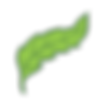Isolated-leaves-3.png