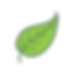 Isolated-leaves-2.png