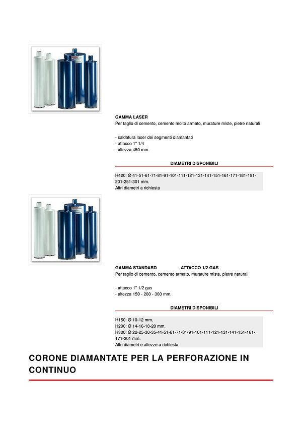 corone1-3.jpg