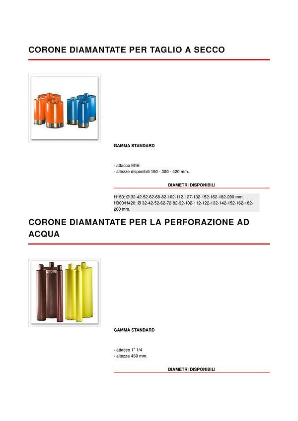 corone1-1.jpg