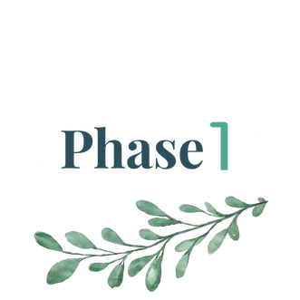 PHASE_1.png