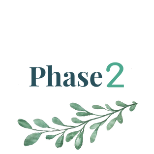 PHASE_2.png