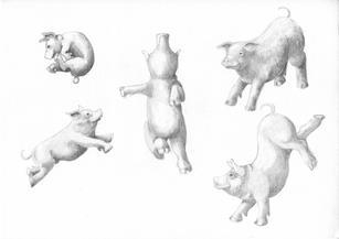 Dancing Pigs