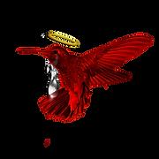 RedAngelHalo Humming bird Facing Left.pn