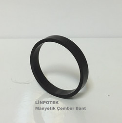 Multi pole magnet,  ring magnetic