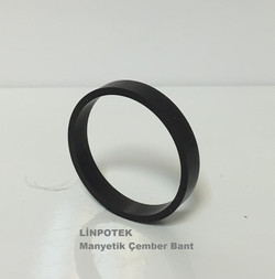 Multi pole mıknatıs ring magnet