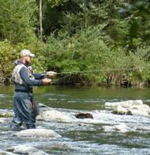 Fly Fishing Comp.jpg