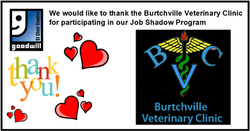 BVC Jobshadow