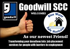 Bluewater Safe Horizons Goodwill.png