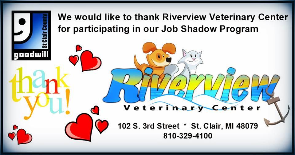 RVC Jobshadow